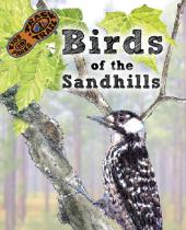 Birds of the Sandhills brochure thumbnail