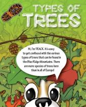 Types of Trees brochure