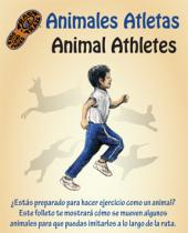 Bilingual Animal Athletes brochure