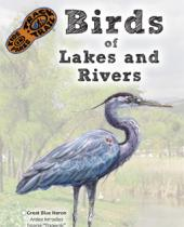 Birds of Lakes and Rivers brochure