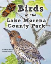 Birds of Lake Morena brochure