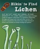 Hikin' to Find Lichen brochure