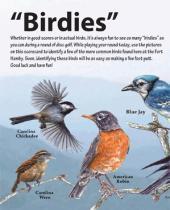 """""""Birdies"""" disc golf scorecard"""