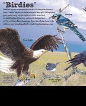 Birdies scorecard thumbnail