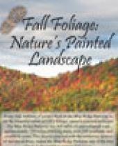 Fall Foliage: Nature's Painted Landscape Brochure