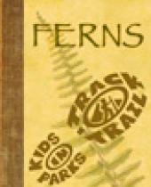 Ferns - A Sketchbook Guide brochure