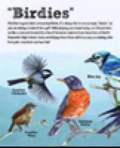 """Birdies"" scorecard"