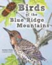 Birds of the Blue Ridge Mountains brochure