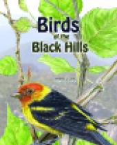 Birds of the Black Hills