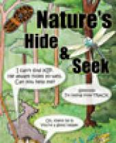 Nature's Hide and Seek
