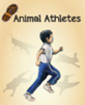 Animal Athletes brochure thumbnail