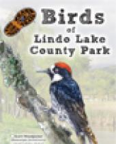 Birds of Lindo Lake County Park brochure