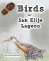Birds of San Elijo brochure