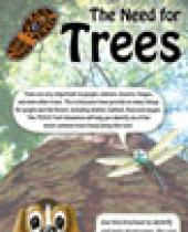 Need for Trees brochure
