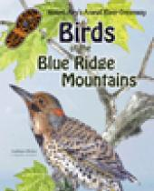 Mount Airy's Ararat River: Birds of the Blue Ridge brochure