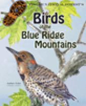 Pisgah National Forest: Birds of the Blue Ridge brochure