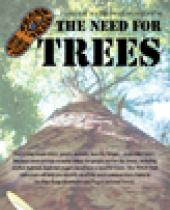 Pisgah National Forest: The Need For Trees brochure