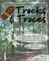 Town of Wytheville's Crystal Springs: Tracks & Traces brochure