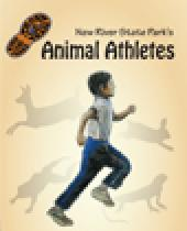 New River: Animal Athletes - Critter Cardio for Kids brochure