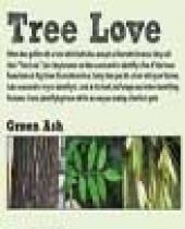 Big Sioux Trees Scorecard brochure