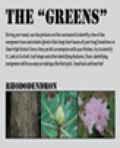 """Owen High Disc Golf: The """"Greens"""" Scorecard"""
