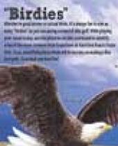 Hartford Beach Birds Scorecard brochure