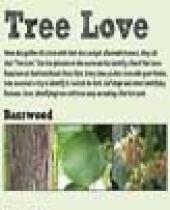 Hartford Beach Trees Scorecard brochure