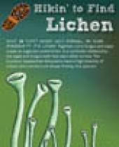 Hikin' to find Lichen brochure