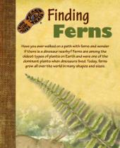 Finding Ferns brochure