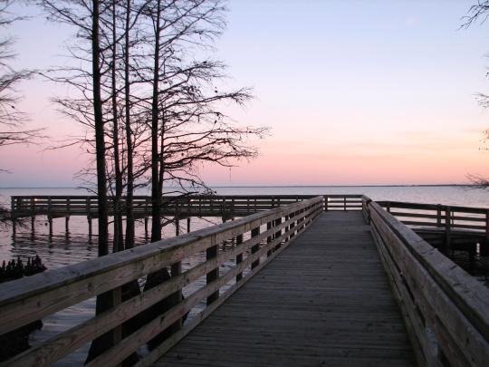 Boardwalk by Phelps Lake