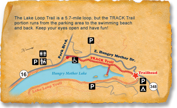 Hungry Mother State Park TRACK Trail map