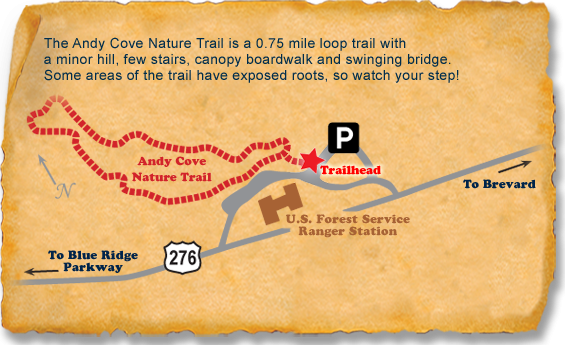 Andy Cove TRACK Trail map