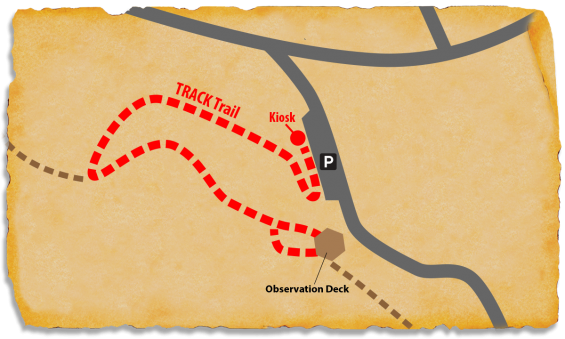 Map of CCC NCF-24 TRACK Trail