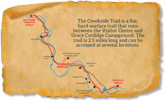 Map of TRACK Trail at Custer State Park