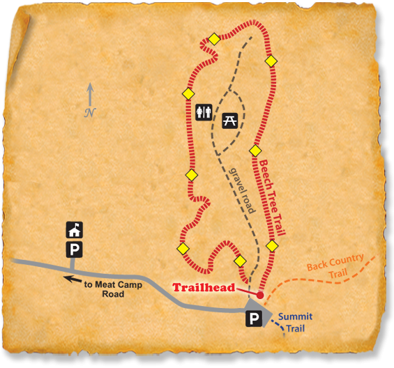 Map of TRACK Trail at Elk Knob State Park