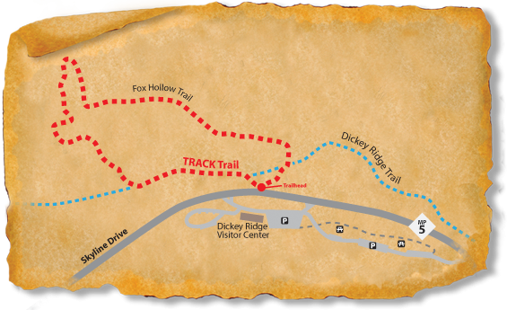 Map of the Fox Hollow TRACK Trail