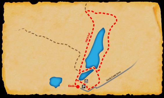 Map of Sandy Creek Park TRACK Trail