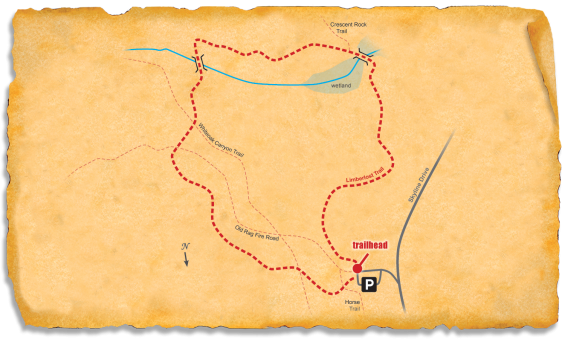 Map of TRACK Trail at Shenandoah National Park's Limberlost Trail