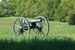 Cannon in a field