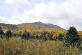 Mount Jefferson dressed in fall colors