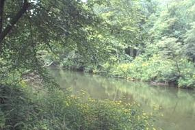 North Toe River