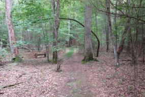 Claytor lake TRACK Trail