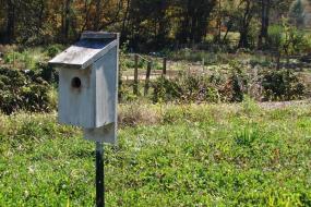 Birdhouse at the community garden