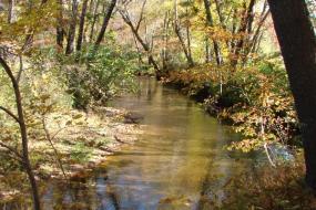 Swannanoa River in Fall