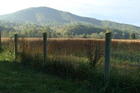 View of the Ragged Mountains behind fence row