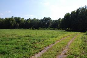 Tire path through field