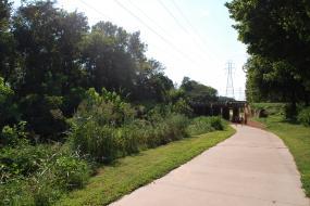 Paved path leading under a bridge