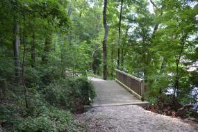 Wooden bridge over a Cape Fear River tributary