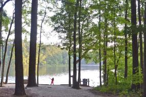 Gravel path down to lake