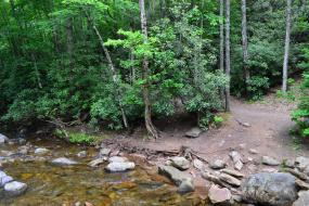 Trail along rocky stream
